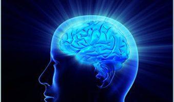 brain frame of mind